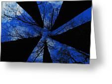 Looking Up Greeting Card by Raymond Salani III