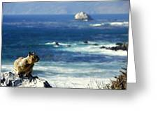 Lost At Sea Greeting Card by Karen Wiles