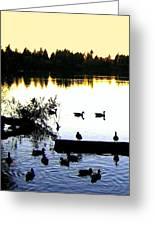 Lost Lagoon At Sundown Greeting Card by Will Borden
