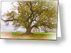 Louisiana Dreamin' Greeting Card by Steve Harrington