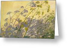 Lovage Clematis And Shadows Greeting Card by Timothy  Easton
