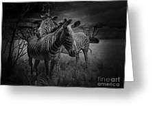 Love Season IIi - African Dream I Greeting Card by Xueling Zou