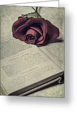 Love Stories Greeting Card by Joana Kruse