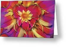 Loveflower Orangered Greeting Card by Alixandra Mullins