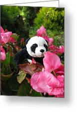 Lovely Pink Flower Greeting Card by Ausra Huntington nee Paulauskaite