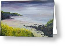 Lovers Cove Kinsale   Original Sold Greeting Card by Conor Murphy
