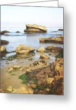 Low Tide Greeting Card by Marty Koch