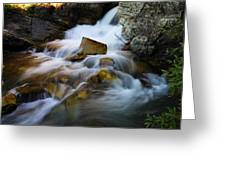 Lower Apikumi Falls Glacier National Park Greeting Card by Jeff  Swan