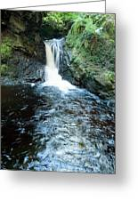 Lower Fall Puck's Glen Greeting Card by Gary Eason