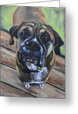 Lugnut Greeting Card by Donna Tuten