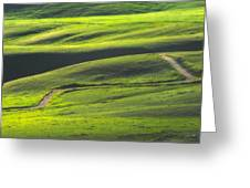 Luminous Green  Greeting Card by Joan Herwig