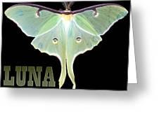 Luna 1 Greeting Card by Mim White