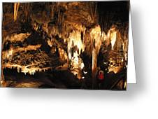 Luray Caverns - 121261 Greeting Card by DC Photographer
