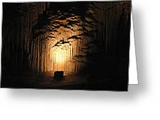 Luray Caverns - 121288 Greeting Card by DC Photographer