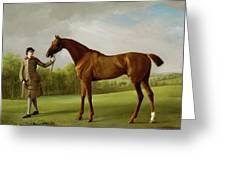 Lustre Held By A Groom Greeting Card by George Stubbs
