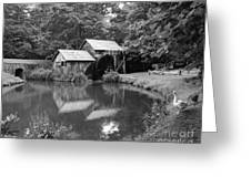 Mabry Mill Greeting Card by Mel Steinhauer