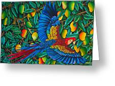 Macaw In Mango Tree Greeting Card by Daniel Jean-Baptiste