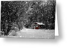 Made In Maine Winter  Greeting Card by Brenda Giasson