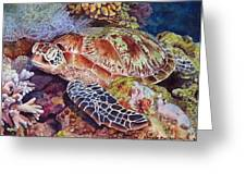 Magical Sea Turtle Greeting Card by Sharon Farber