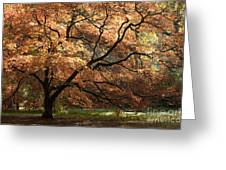 Magnificent Autumn Greeting Card by Anne Gilbert