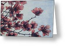 Magnolia Greeting Card by Andrew Danielsen