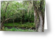 Magnolia Plantation 4 Greeting Card by Ron Kandt