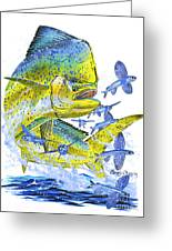 Mahi Mahi Greeting Card by Carey Chen