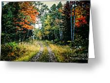 Maine Back Road Greeting Card by George DeLisle