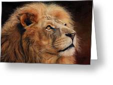 Majestic Lion Greeting Card by David Stribbling