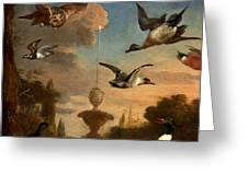 Mallard Golden Eagle Wild Fowl in Flight Greeting Card by Melchior de Hondecoeter