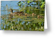 Mallard Mom And The Kids Greeting Card by Sharon Talson