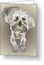 Maltipoo Greeting Card by MM Anderson