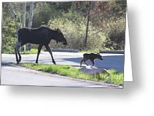 Mama And Baby Moose Greeting Card by Fiona Kennard