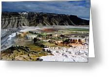 Mammoth Hot Springs Greeting Card by Robert Woodward