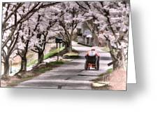 Man In Wheelchair Under Cherry Blossoms Greeting Card by Dan Friend