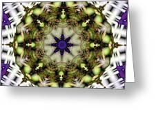 Mandala 21 Greeting Card by Terry Reynoldson