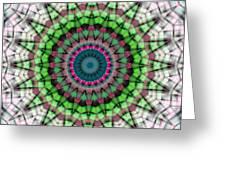 Mandala 26 Greeting Card by Terry Reynoldson