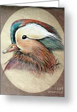 Mandarin Wood Duck Greeting Card by Joey Nash