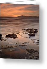 Marbella Spain Greeting Card by Guido Montanes Castillo