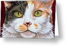Marigold Greeting Card by Ditz