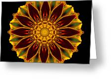 Marigold Flower Mandala Greeting Card by David J Bookbinder