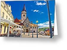 Marija Bistrica marianic sanctuary in Croatia Greeting Card by Dalibor Brlek