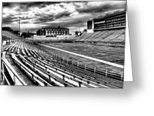 Martin Stadium On The Washington State University Campus Greeting Card by David Patterson