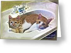 Mary's Cats Greeting Card by Joan  Minchak