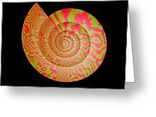 math conch Greeting Card by GuoJun Pan