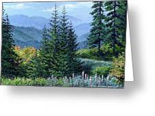 Mc Coy Creek Canyon Greeting Card by Michael Bartlett