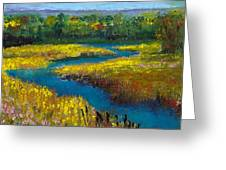 Meandering Stream Greeting Card by David Patterson