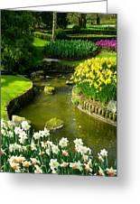 Meandering Stream In Spring Flower Garden Keukenhof Near Lisse Netherlands Greeting Card by Robert Ford
