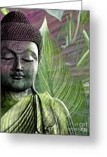 Meditation Vegetation Greeting Card by Christopher Beikmann