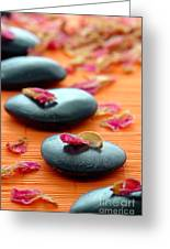 Meditation Zen Path Greeting Card by Olivier Le Queinec